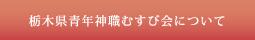 栃木県青年神職むすび会について